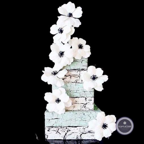 Свадебный торт Протея